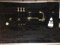 Black Trumpet £100