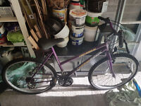 2 Female Bicycles for sale