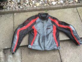 Motorcycle Leather Jacket (Dainese)