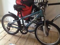 Raliegh child's bike age 6-9