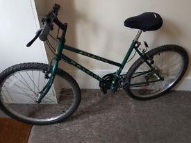 Raleigh Atlanta Bike for Sale