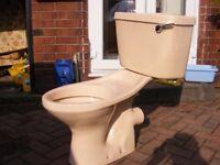 Peach toilet