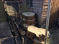 Freshly cut timber for sale
