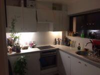 Temporary room in friendly houseshare near London Fields 6 - 20 weeks.