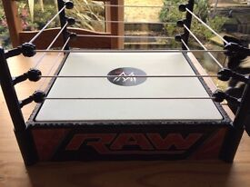 WWE Raw wrestling ring and 2 wrestlers.