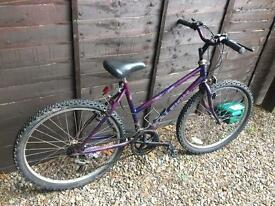 "Ladies 18-19"" Bike"