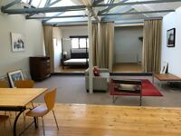 Loft apartment for rent in Tobacco Factory
