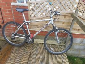 Falcon Gents Mountain Bicycle