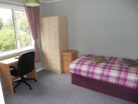 Furnished bedroom near Science Park