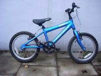 Kids Bike by Ridgeback, Blue, 16 inch Wheels are Great for Kids 5+ yrs, JUST SERVICED/ CHEAP PRICE!