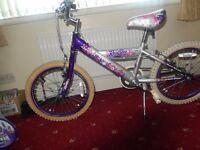 "Rock Star Children's Bike 17"" wheel"