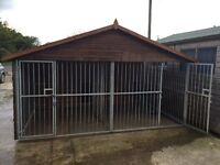 Reeves double Blenheim dog kennel galvanised steel