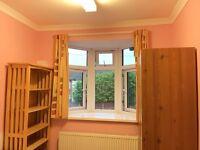 Nice single room to rent