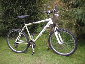 raleigh freeride at-10 7005 front suspension aluminium 20 in frame,runs perfectly