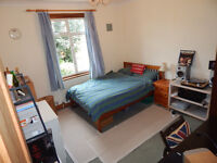 Double Room in Spacious Professional Houseshare
