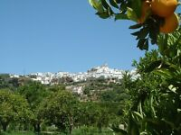 Holiday rental inland Costa del Sol. Unspoilt white mountain village, 1 hour Malaga and Marbella.