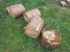 Wood / Logs For Sale