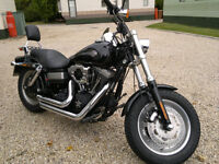 fxdf fat bob with full servis history may part x for1200