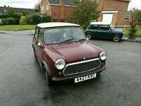 1984 classic mini mayfair