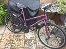 "Ladies 19"" Raleigh Max bike bicycle. Free lights & delivery"