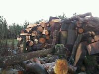 Unseasoned Uncut Logs (£25 per Cubic Metre)