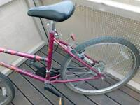Used Rayleigh bicycle for sales 25 GBP