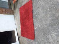 Red Oblong Rug