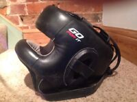 *REDUCED* Boxing Headguard
