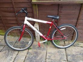 MTB Bike Youth Size