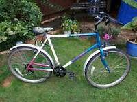 Raleigh high lander one of many quality bicycles for sale