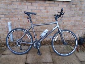 RIDGEBACK STORM Mens, Flat (straight) Bar Road Bike.