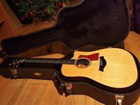 Taylor 510CE L9 (Limited Edition) - HIGH END GUITAR