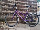 Ladies Raleigh in a great condition