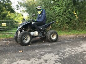Quadzilla 320cc auto very clean and fast full engine rebuild a month ago , sounds mint !! Swaps r6 !