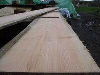 larch planks/boards/flooring/cladding