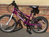 Muddyfox synergy- 20 girls purple mountain bike