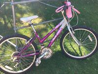 "Girls Raleigh Krush Bike 24"" wheels age 7-10 yrs"