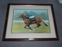 Framed Picture of Race Horse - Generous
