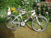 "Boys Raleigh Void Mountain Bike - 24"" Wheels - 15 Gears - 14.5"" Frame"