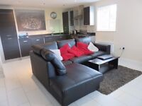 For Lease, Fully Furnished, Modern Interior, Two bed flat, Jesmond Grange, Aberdeen.