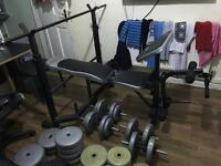 Weight bench with weights, barbells and dumbbells