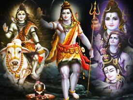 Best-Vedic Indian Astrology/ Black Magic Healer/ Stop-Divorce/EX Love Back/Psychic/ Spiritual Healer