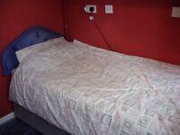 single room ( peverel road )