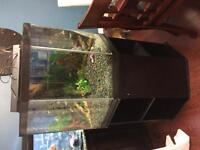 46 gallon pentagon fish tank 75$