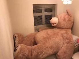 8ft stuffed bear - needs new home