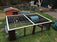 Guinea Pig/Rabbit Run and Shelter