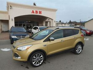 2014 Ford Escape SEL 4WD