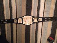 replica wwe champion spinner belt