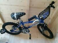 Blue spider bike