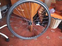 dynamo wheel